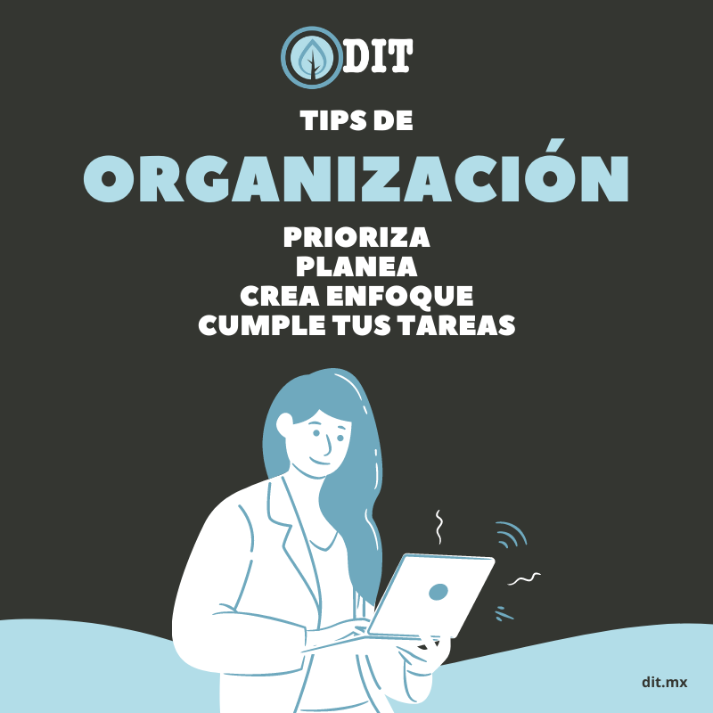 Tips para mejorar tu organización